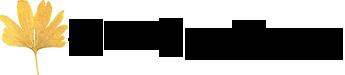 Calico Juno Designs